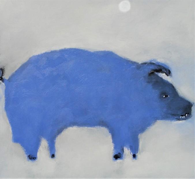 Pig with teeth