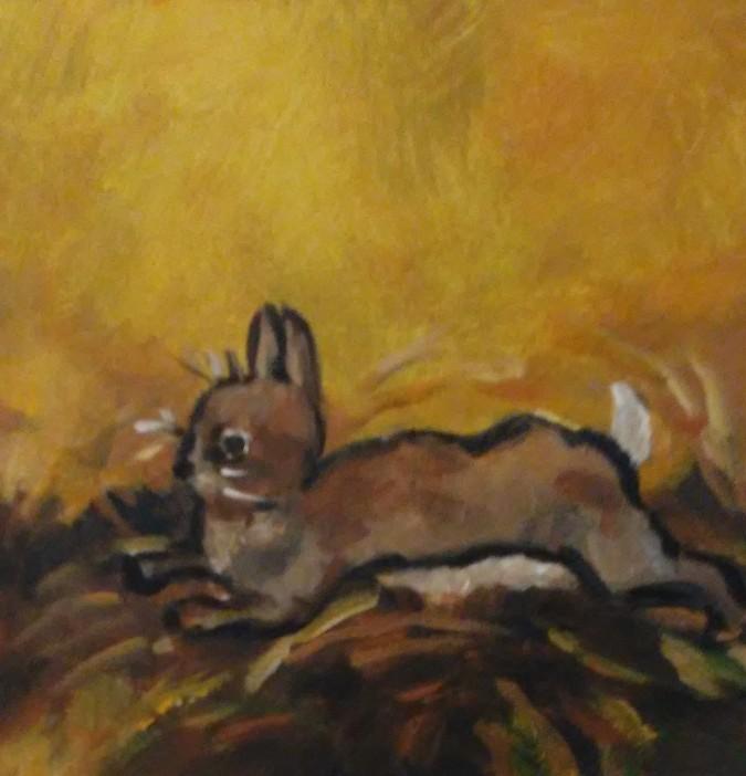 rabbit (2)